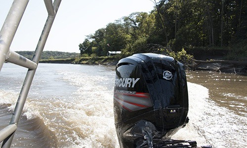 2018 Mercury Marine 115 hp Command Thrust FourStroke in Edgerton, Wisconsin