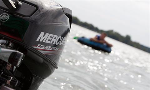 2018 Mercury Marine 20 hp in Albert Lea, Minnesota