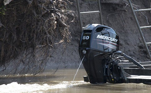 2018 Mercury Marine 40 hp EFI Command Thrust in Saint Peters, Missouri