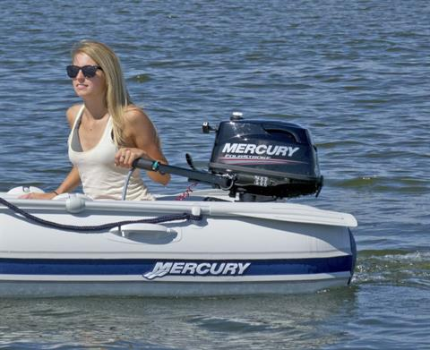 2018 Mercury Marine 4 hp FourStroke in Holiday, Florida