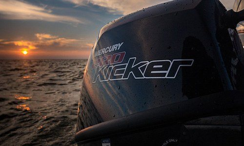 2018 Mercury Marine 9.9 hp ProKicker FourStroke in Holiday, Florida