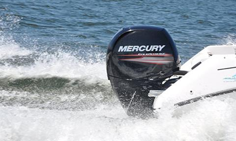 Mercury Marine FourStroke 150 hp in Spearfish, South Dakota - Photo 7