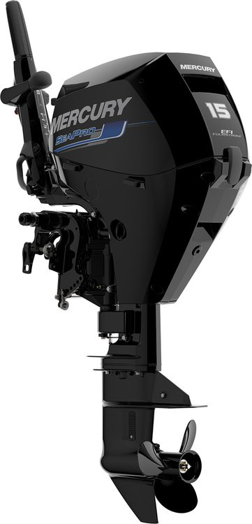 2018 Mercury Marine SeaPro FourStroke 15 hp in Goldsboro, North Carolina
