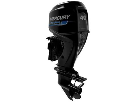 2018 Mercury Marine SeaPro FourStroke 40 hp in Kaukauna, Wisconsin