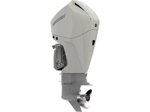 2019 Mercury Marine 200L Fourstroke DTS in Holiday, Florida
