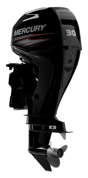 2019 Mercury Marine 30ELPT FourStroke in Saint Helen, Michigan