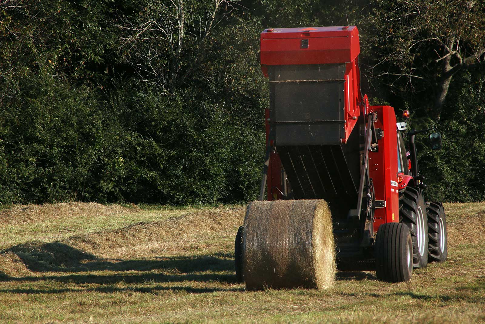 2018 Massey Ferguson 2956 / 2956A Round Baler in Hazlehurst, Georgia - Photo 1