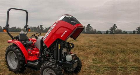 2019 Massey Ferguson 1739E HST in Ponderay, Idaho - Photo 2