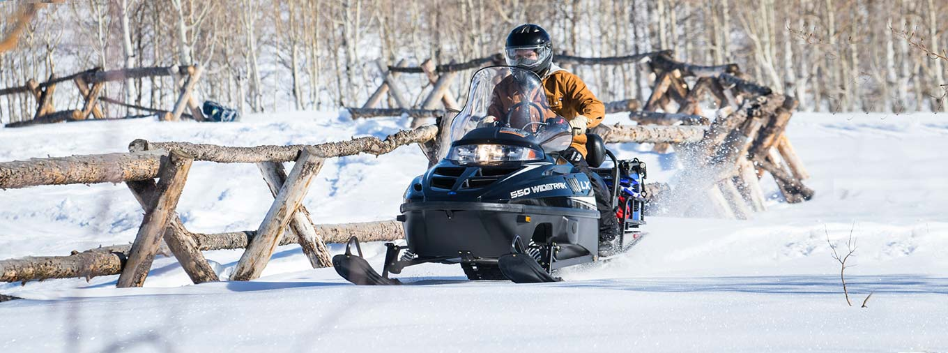 2016 Polaris 550 Widetrak LX ES in Algona, Iowa - Photo 4
