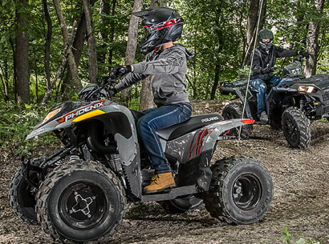 2017 Polaris Phoenix 200 in Brighton, Michigan