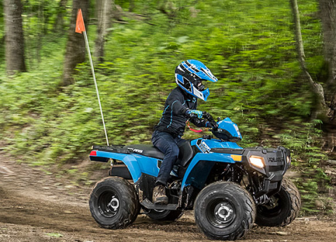 2017 Polaris Sportsman 110 EFI in Pierceton, Indiana