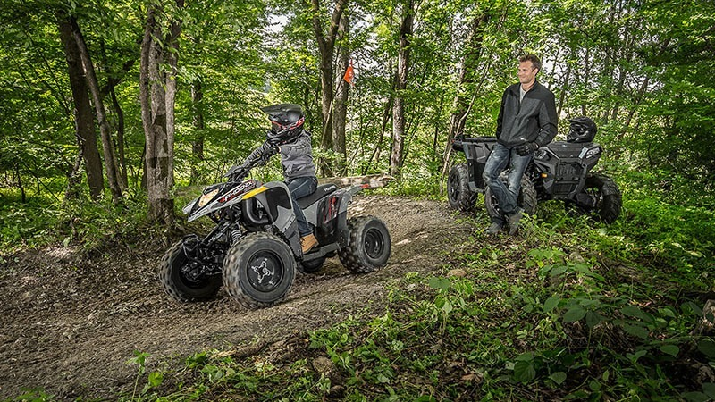 2018 Polaris Phoenix 200 in Elizabethton, Tennessee