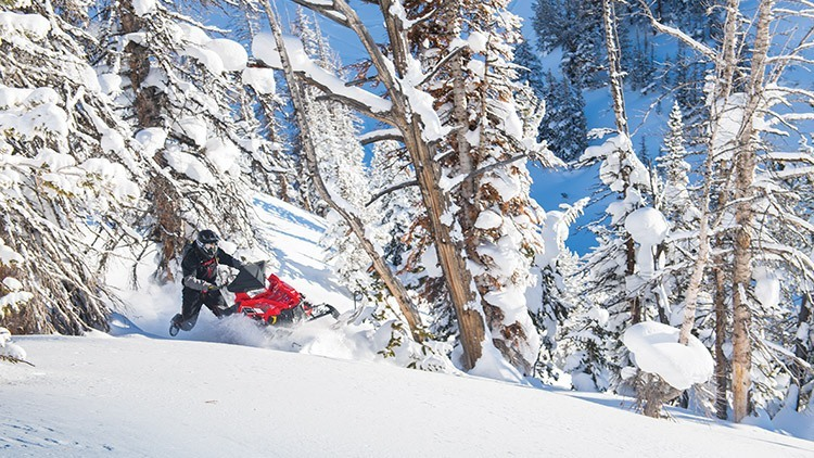 2018 Polaris 800 PRO-RMK 155 ES in Gunnison, Colorado