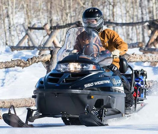 2018 Polaris 550 WideTrak LX ES in Bigfork, Minnesota