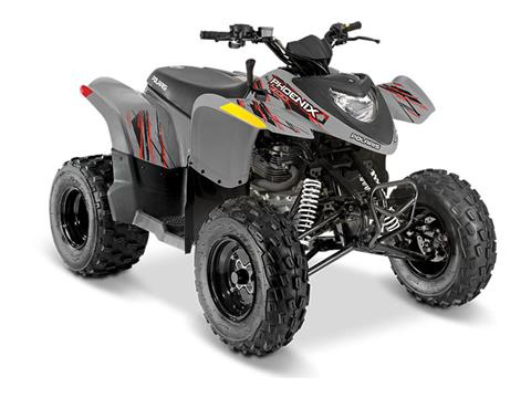 2019 Polaris Phoenix 200 in Monroe, Michigan