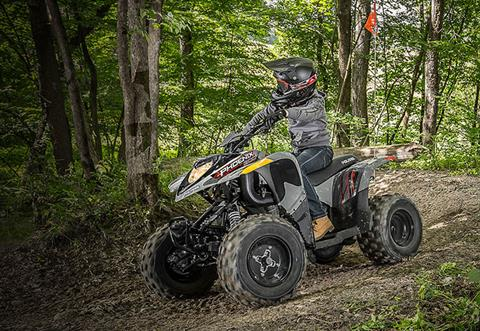 2020 Polaris Phoenix 200 in Bigfork, Minnesota - Photo 2