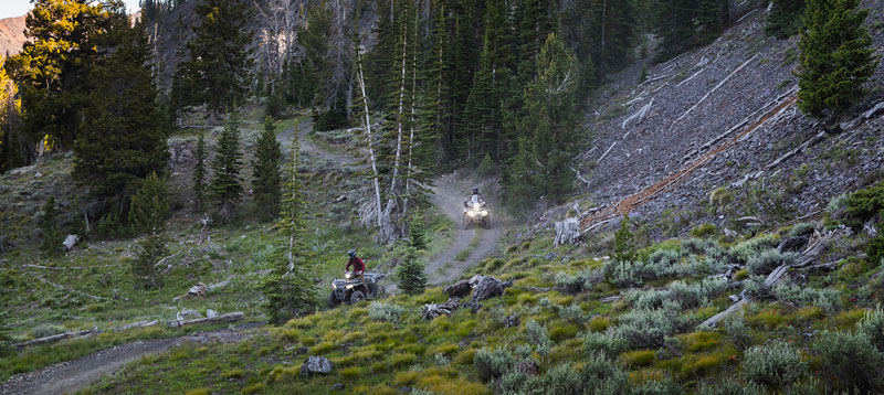 2021 Polaris Sportsman 450 H.O. EPS in Duck Creek Village, Utah - Photo 3