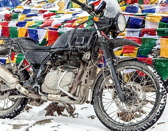 2019 Royal Enfield Himalayan 411 EFI in Aurora, Ohio - Photo 21