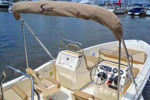 2018 Scout Boats 175 Sport Dorado in Bridgeport, New York - Photo 8