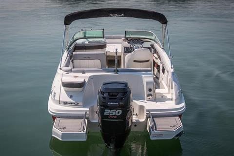 2016 Sea Ray 240 Sundeck Outboard in Madisonville, Louisiana