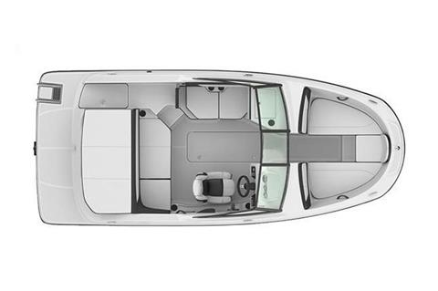 2017 Sea Ray SPX 190 in Holiday, Florida
