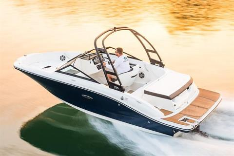 2019 Sea Ray SPX 190 in Holiday, Florida - Photo 2