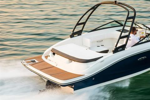 2019 Sea Ray SPX 190 in Holiday, Florida - Photo 13