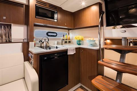 2019 Sea Ray Sundancer 350 in Holiday, Florida - Photo 13