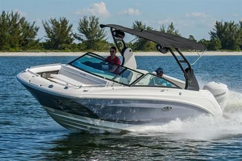 2019 Sea Ray SDX 250 Outboard in Holiday, Florida - Photo 1