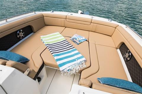 2019 Sea Ray SDX 290 Outboard in Holiday, Florida - Photo 6