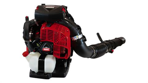 Shindaiwa EB810/RT in Sturgeon Bay, Wisconsin
