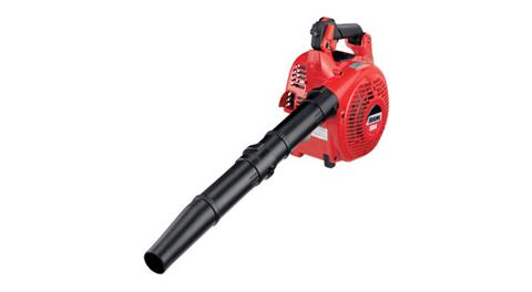 2019 Shindaiwa EB344 Blower in Wausau, Wisconsin