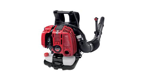 Shindaiwa EB802RT Blower in Sturgeon Bay, Wisconsin