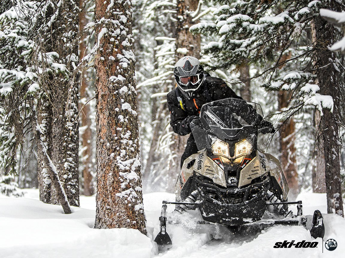 2016 Ski-Doo Renegade Enduro 600 H.O. E-TEC ES in Cherry Creek, New York - Photo 3