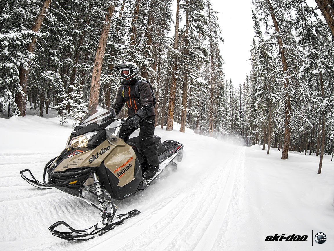 2016 Ski-Doo Renegade Enduro 600 H.O. E-TEC ES in Cherry Creek, New York - Photo 5