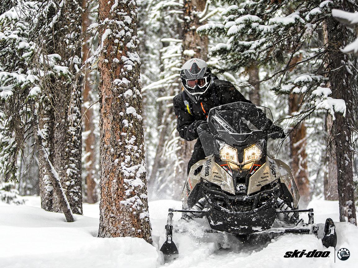 2016 Ski-Doo Renegade Enduro 900 ACE ES 3