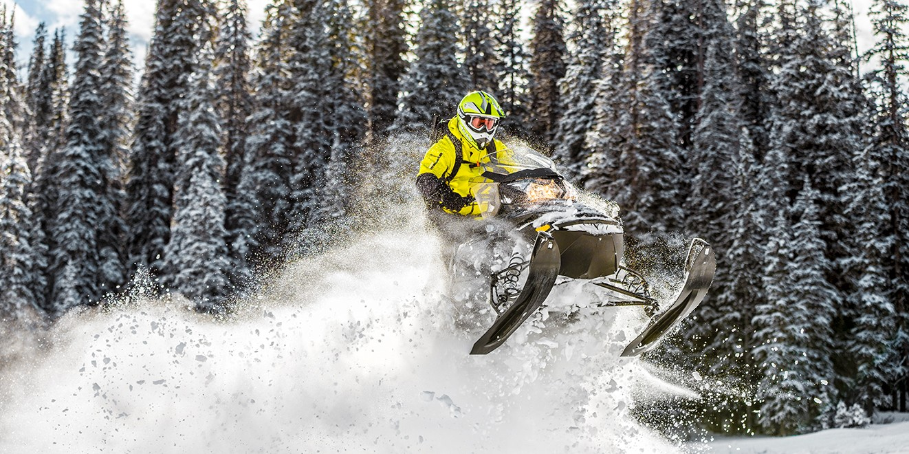 2017 Ski-Doo Renegade Backcountry 800R E-TEC E.S. in Augusta, Maine