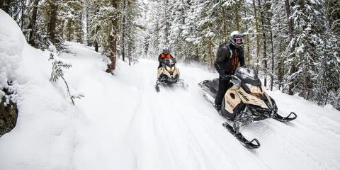 2017 Ski-Doo Renegade Enduro 600 H.O. E-TEC E.S. in Lancaster, New Hampshire