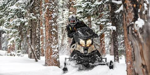2017 Ski-Doo Renegade Enduro 600 H.O. E-TEC E.S. in Baldwin, Michigan