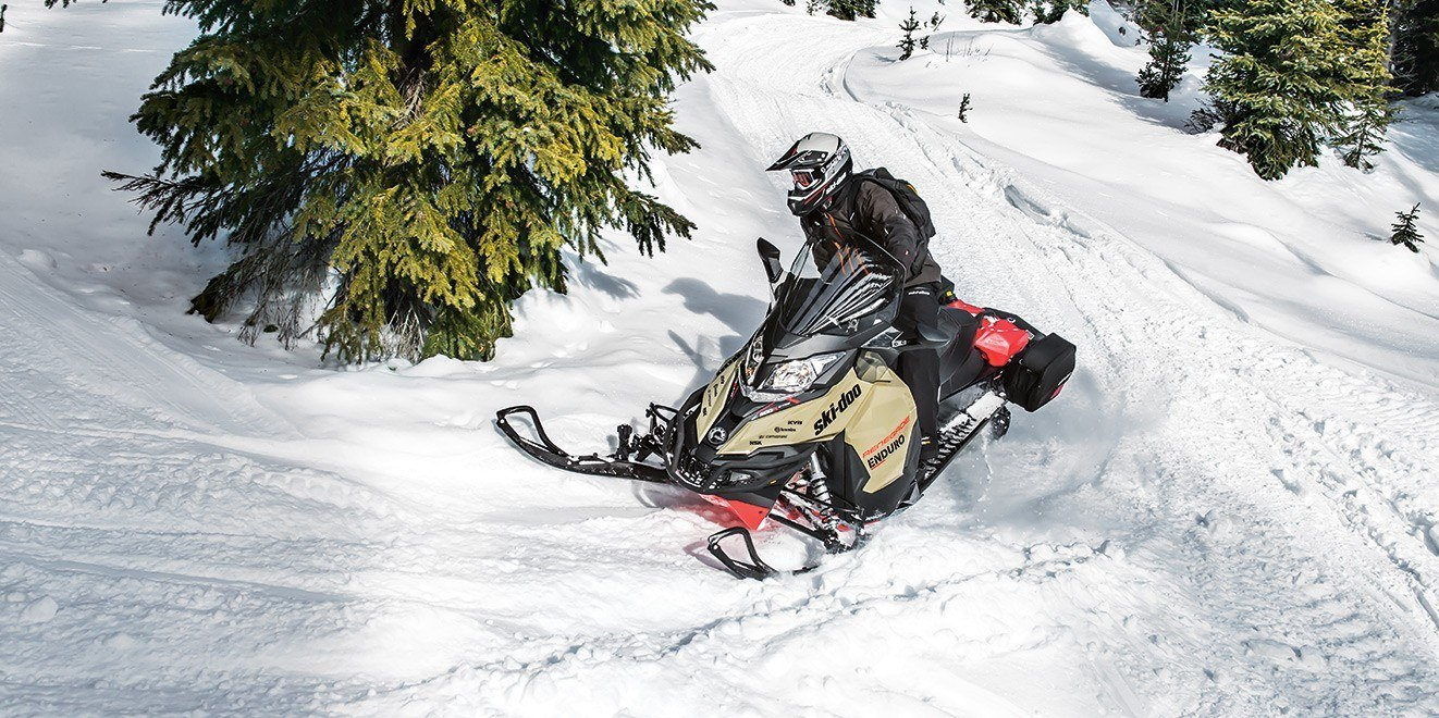 2017 Ski-Doo Expedition LE 600 H.O. E-TEC in Wasilla, Alaska