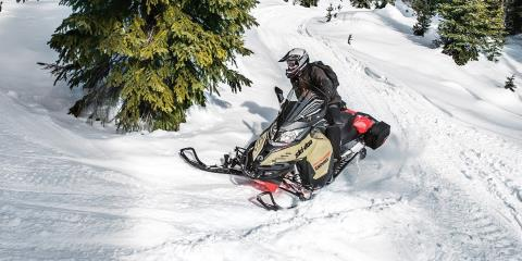 2017 Ski-Doo Expedition LE 600 H.O. E-TEC in Augusta, Maine