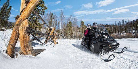 2017 Ski-Doo Expedition SE 600 H.O. E-TEC in Conway, New Hampshire