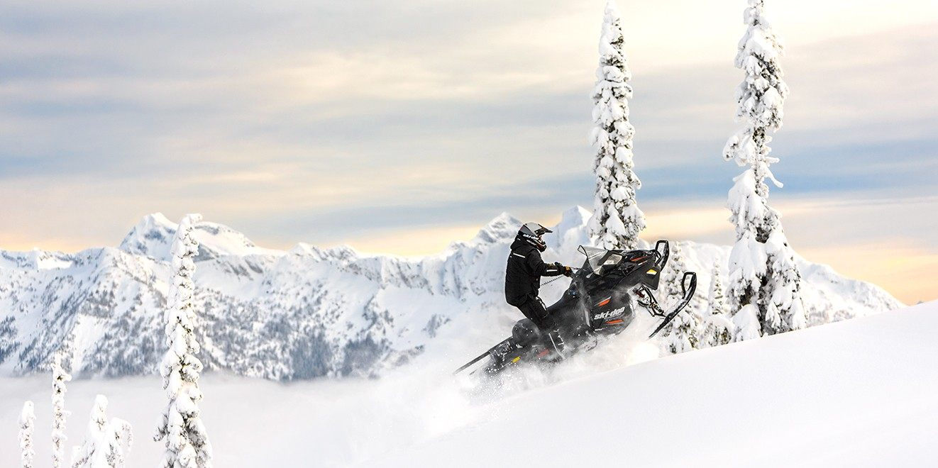 2017 Ski-Doo Expedition Xtreme 800R E-TEC in Salt Lake City, Utah