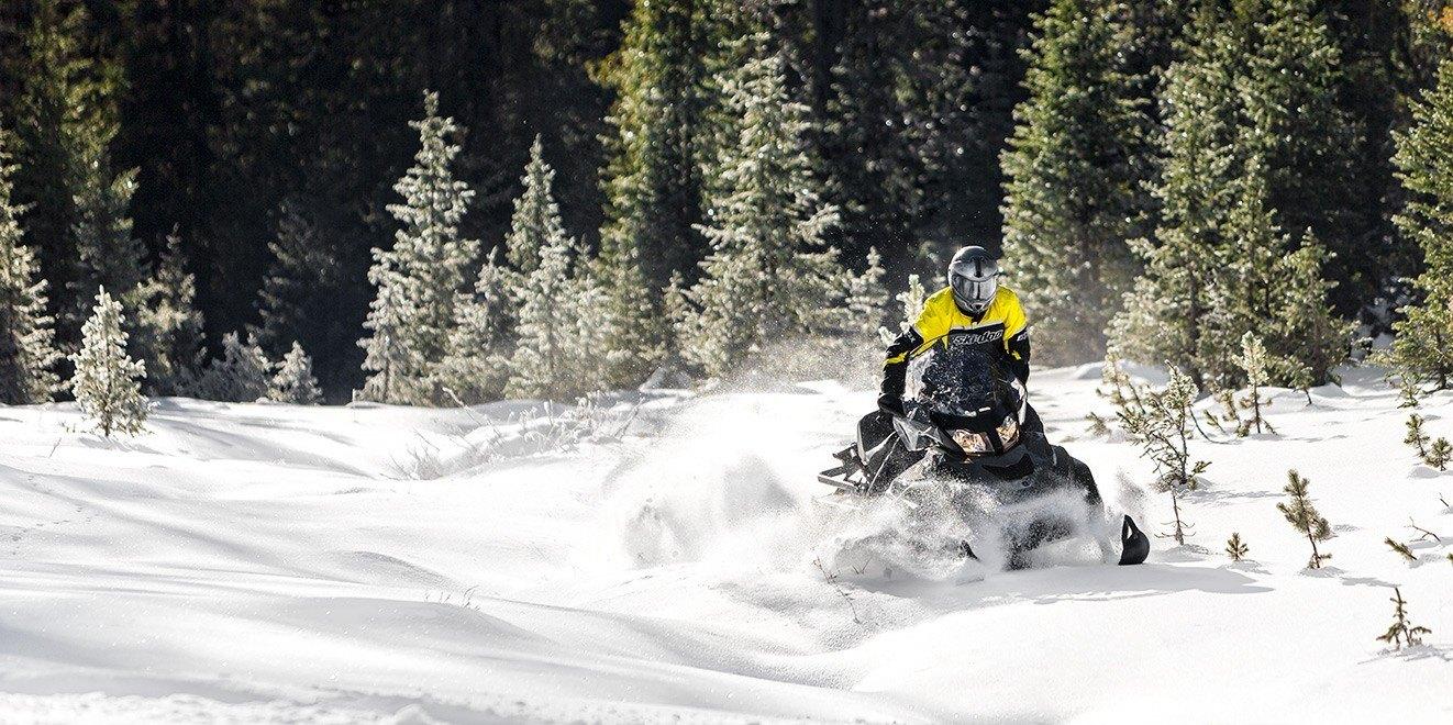 2017 Ski-Doo Skandic WT 600 H.O. E-TEC in Wasilla, Alaska