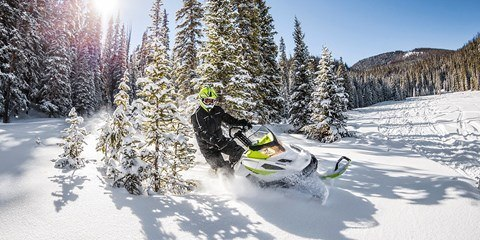2017 Ski-Doo Tundra Xtreme in Lancaster, New Hampshire