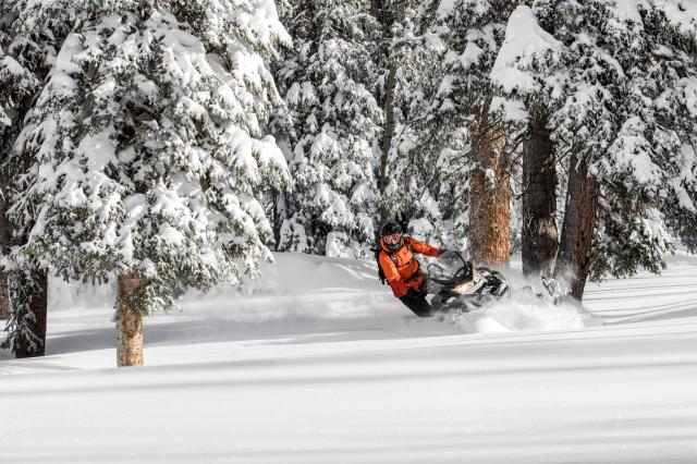 2018 Ski-Doo Renegade Backcountry 850 E-TEC in Butte, Montana