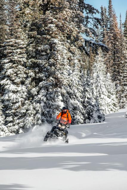 2018 Ski-Doo Renegade Backcountry 850 E-TEC in Island Park, Idaho