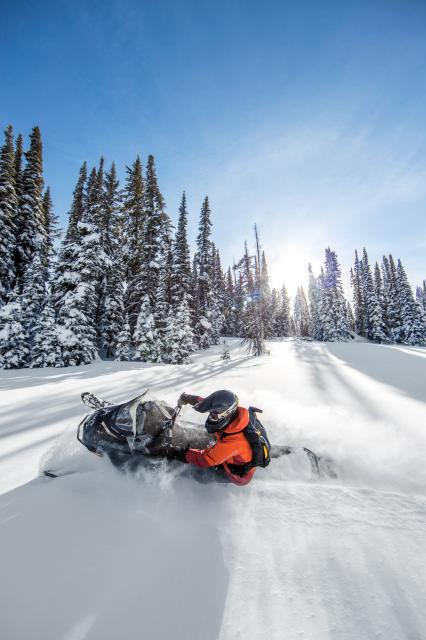 2018 Ski-Doo Renegade Backcountry 850 E-TEC in Johnson Creek, Wisconsin