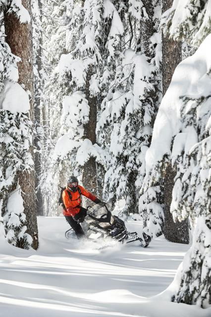 2018 Ski-Doo Renegade Backcountry 850 E-TEC in Wenatchee, Washington