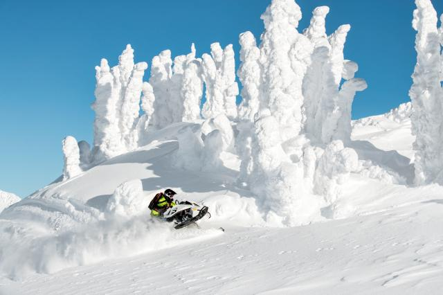 2018 Ski-Doo Freeride 137 850 E-TEC ES Powdermax 2.25 S_LEV_LOW in Island Park, Idaho